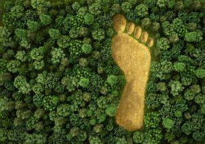 impacto ambiental definicion